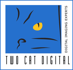 www.twocatdigital.com